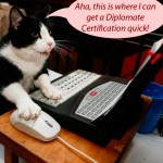 Cat Credentials, Diploma Mill, False Credentials