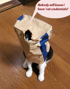 zoe_the_cat, Stephen Doyne, Steven Eichel, the credentialing con
